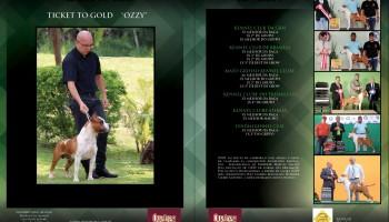 Gallery Mídia: Rainbow Fire Ticket to Gold - Ozzy