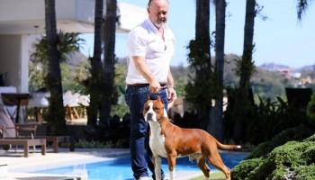 Destaque Nossos Cães: Andrew de Can Guasch - Dudu